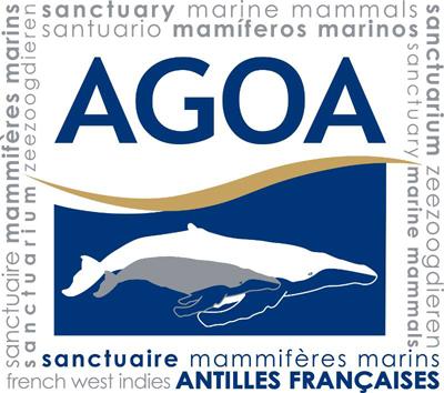Sanctuaire AGOA (Aire Marine Protégé)