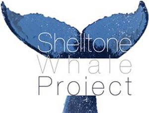 Shelltone Whale Project