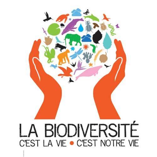 Expo biodiversite web 01